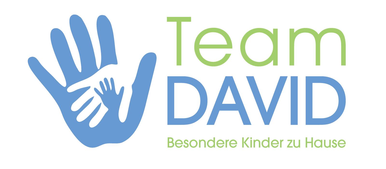 Team DAVID Logo